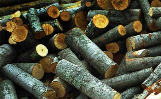 Мокрые дрова готовые к колке